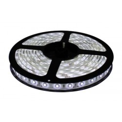 Tira Led Rollo de 5mtrs. Luz Fria 6000ºK 300Leds 24w Uso Interior IP20 NO impermeable
