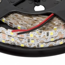 Tira LED (5m)  Luz Fría 6000K 60Leds/m 12V  IP25 No Impermeable